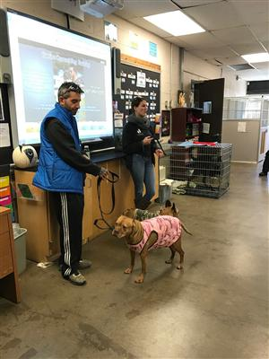 CANINE COUNSEL DOG TRAINING VISIT ANIMAL SCIENCE