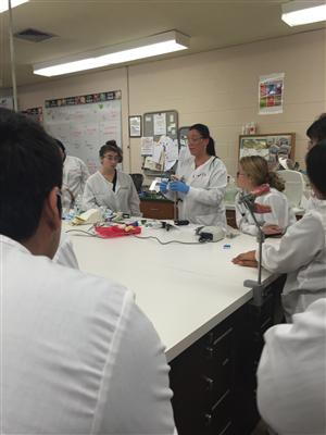DENTAL ASSISTING STUDENTS RECEIVE LESSON ON CREATING TEMPORARY CROWNS